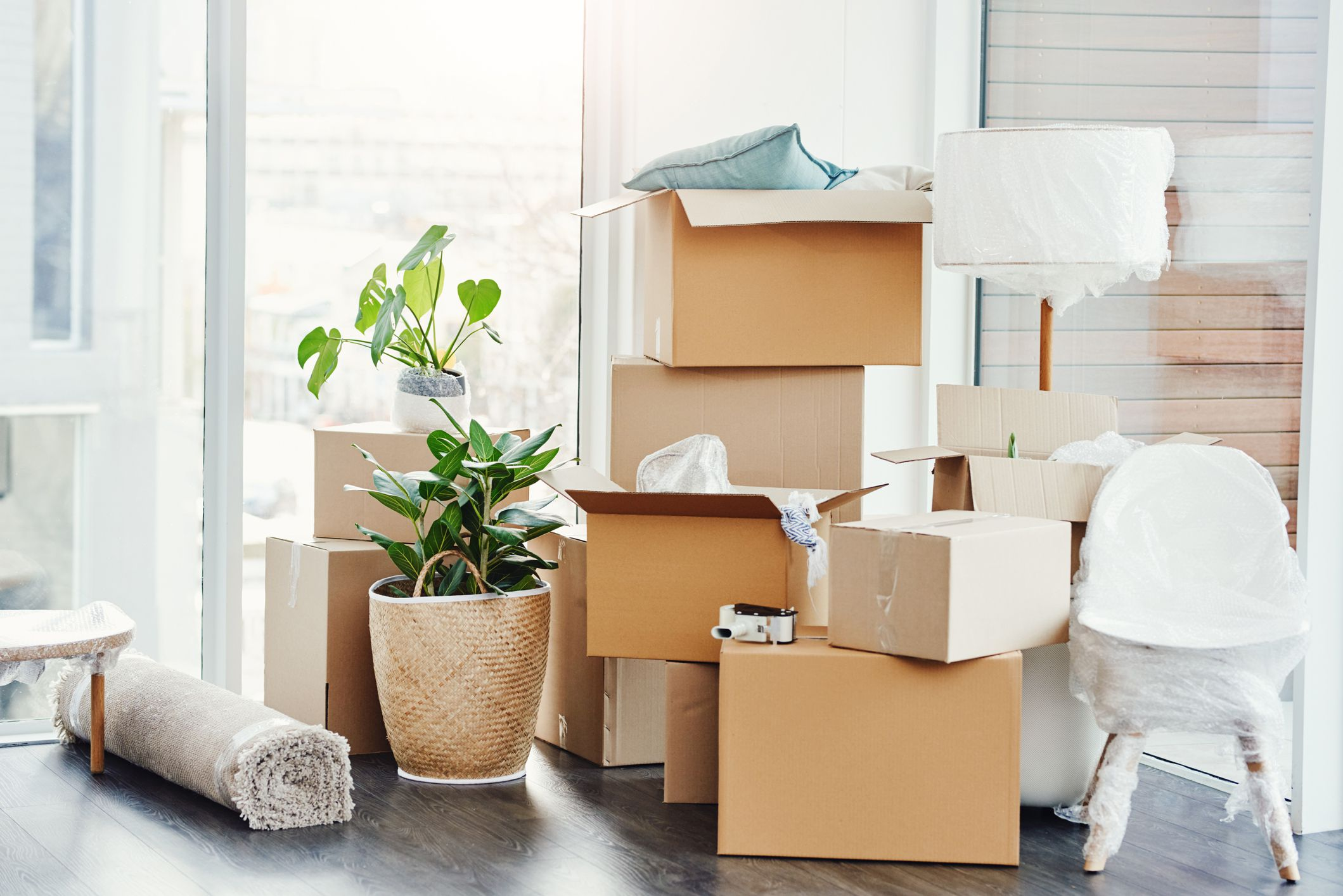 %2fit s moving day 1147468408